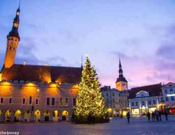 Tallinn Sightseeing – Discover why Estonia's capital is our new favourite place