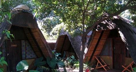 Livingstone: Jollyboys Backpackers