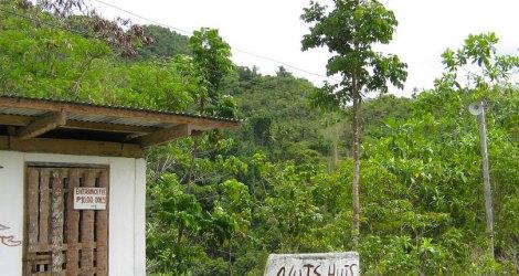 Bohol: Nuts Huts