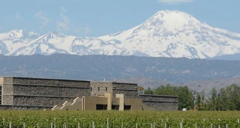 Mendoza: Tour the Bodegas
