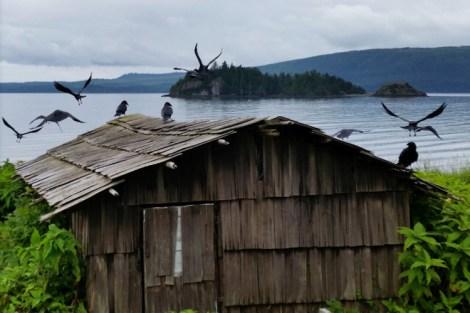 Lost and Found on Haida Gwaii