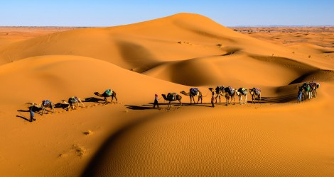 Camping in the Sahara Desert