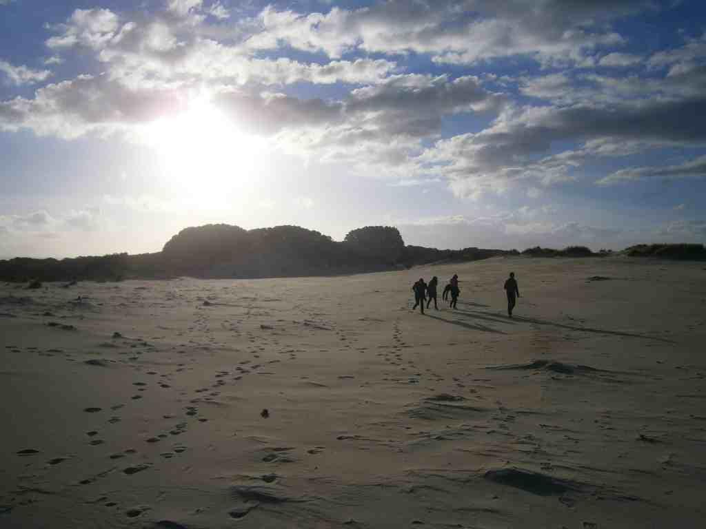 group tours Tasmania
