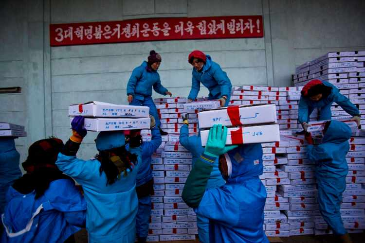 North Korean workers carry boxes of seafood as they load a Chinese transport truck at the Suchae Bong Corp. seafood factory in Rajin, North Korea inside the Rason Special Economic Zone, Nov. 8, 2013. (AP Photo/David Guttenfelder)