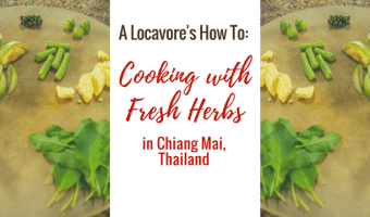 My Adventure Cooking Curry With Farm Fresh Herbs in Thailand