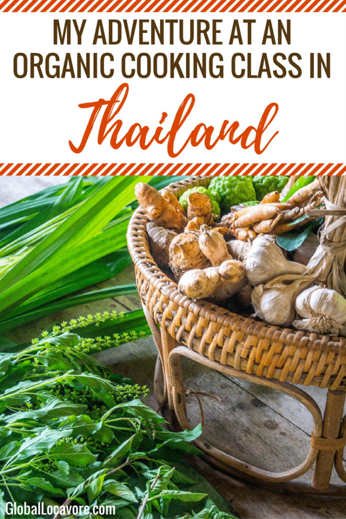 A Locavore's How To: At a cooking class in Chiang Mai, I'm cooking organic Thai food including Pad Thai, Tom Yum Soup, Spring Rolls and Mango Sticky Rice.
