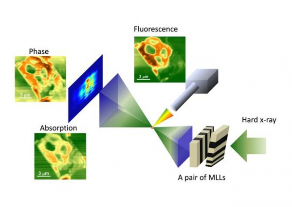 Quantitative x-ray phase imaging at the nanoscale by multilayer Laue lenses.