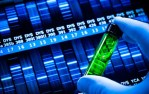 Low-dose lenalidomide plus cytarabine induce complete remission that can be predicted by genetic profiling in elderly acute myeloid leukemia patients. - Global Medical Discovery