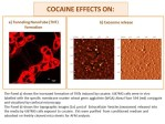In Vitro Effects of Cocaine on Tunneling Nanotube Formation and Extracellular Vesicle Release in Glioblastoma Cell Cultures. - Global Medical Discovery