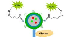 photoluminescent enzymatic nanosensors for glucose sensing- Global Medical Discovery