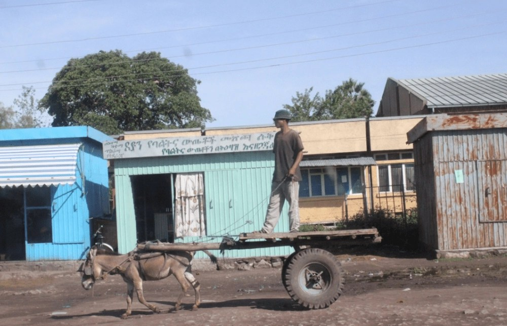 donkey_cart_ethiopia_culture