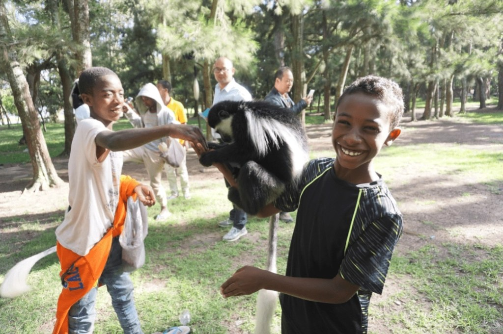 awassa_lakeawassa_monkey_ethiopia