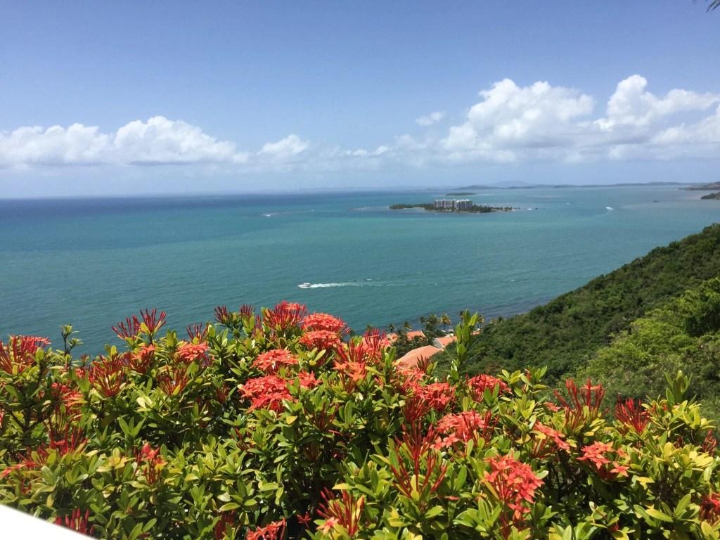 View at El Conquistador Resort overlooking the hillside and ocean