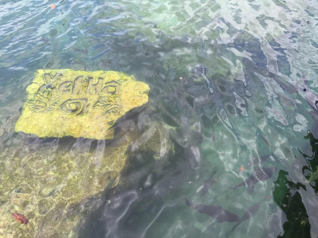 Xel-Ha Eco-Adventure Park in Cancun Mexico