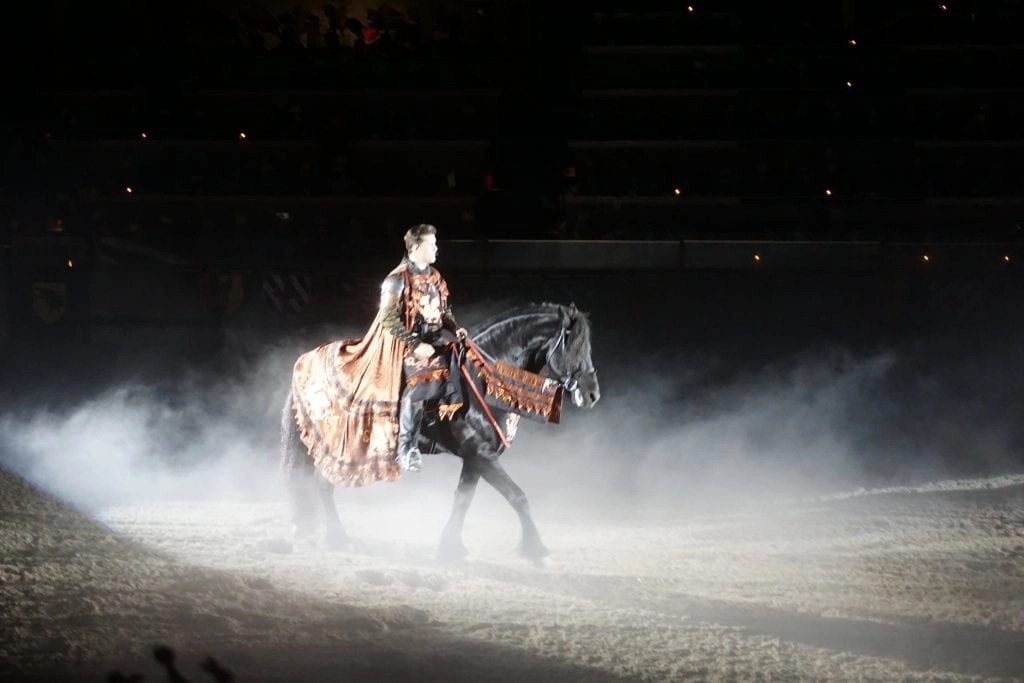 Man riding a beautiful black horse in a dark arena at Medieval Times in Buena Park | Global Munchkins