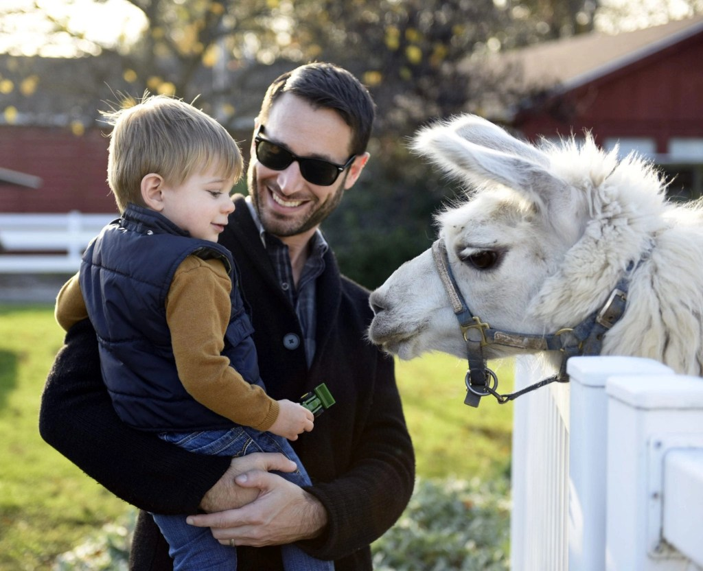 Gettysburg has much more to offer families besides the battlefields. Little ones will enjoy coming face to face with furry friends at one of the local farms. See why visiting Gettysburg with kids should be at the top of your list.