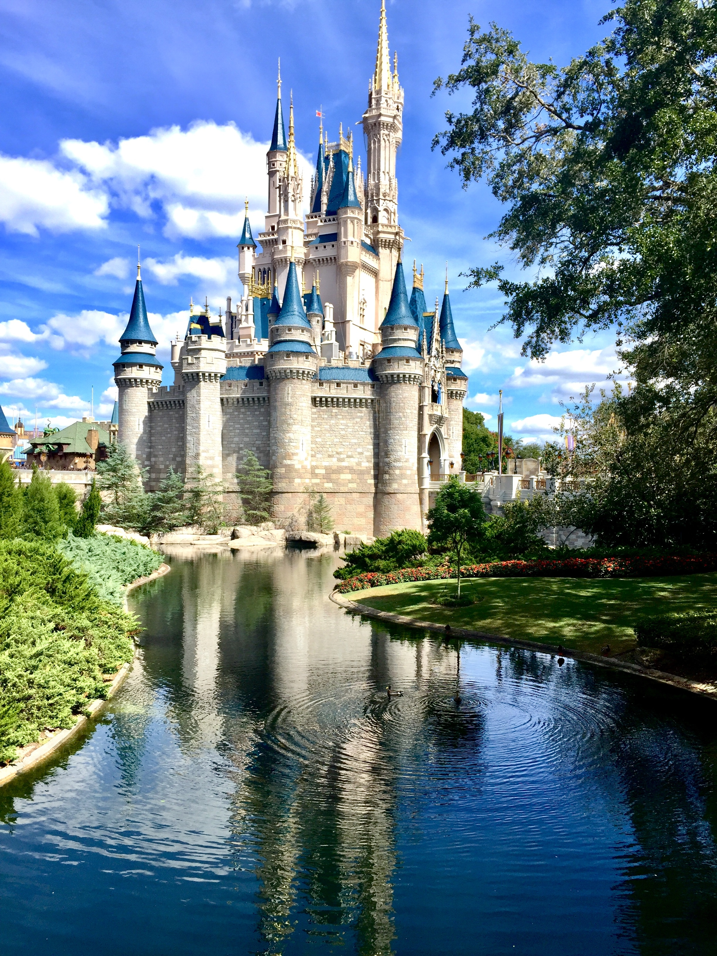 7 Reasons why a Disney Travel Agent will make your trip