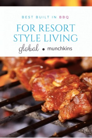 Best Built in BBQs for Resort Style Living best built in bbq