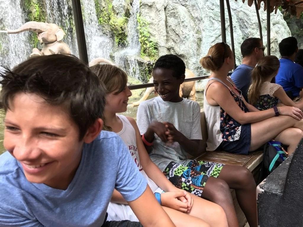 Best Rides at Magic Kingdom - Jungle Cruise