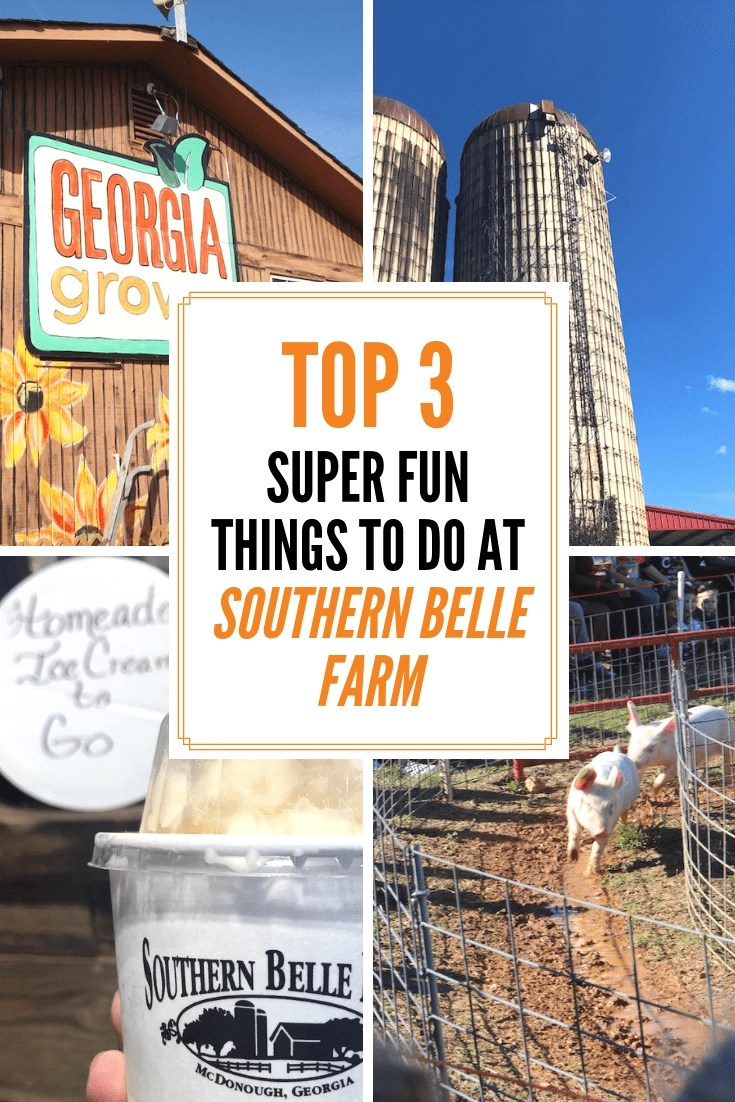 Top 3 Super Fun Things to do at Southern Belle Farm + Even more to do in Henry County Georgia! #southernbellefarm #henrycounty