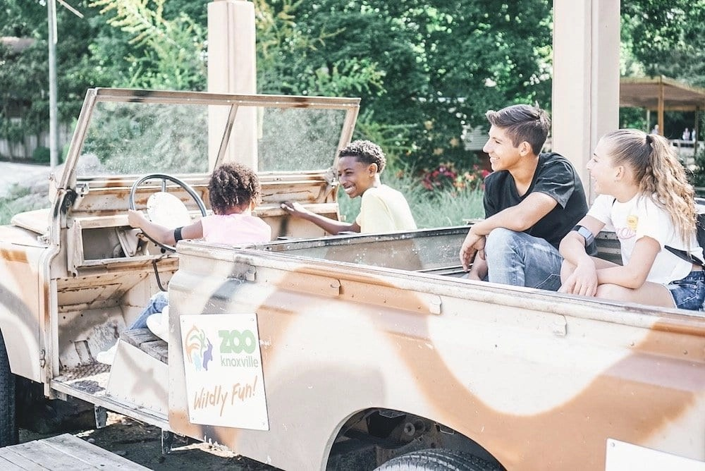 Things to do in Knoxville - Knoxville Zoo