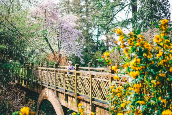best portland hikes