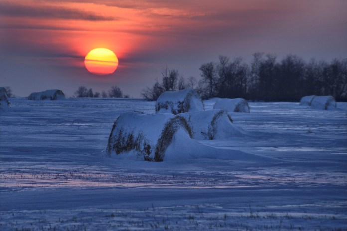 The Feb. 8 Your Saskatchewan photo of the day was taken by John Perret near Aberdeen.