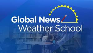 Winnipeg weather school could be coming to a classroom near you