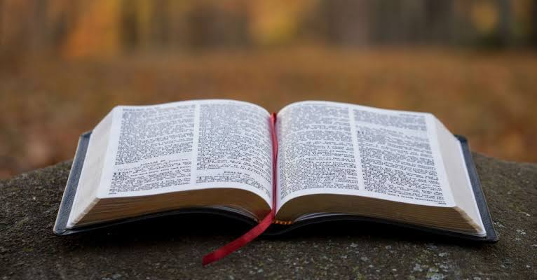 Bible Verses About Putting Your Hope In Your Wealth