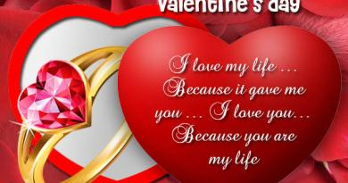 Happy Valentine Day Messages, Texts, Wishes, Quotes You can send Your Boyfriend/Girlfriend, Family & Lover