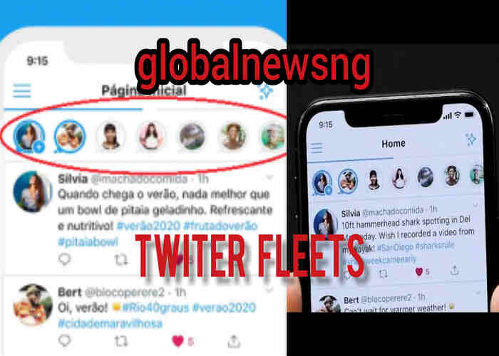 All you need to know about Twitter Fleets Features