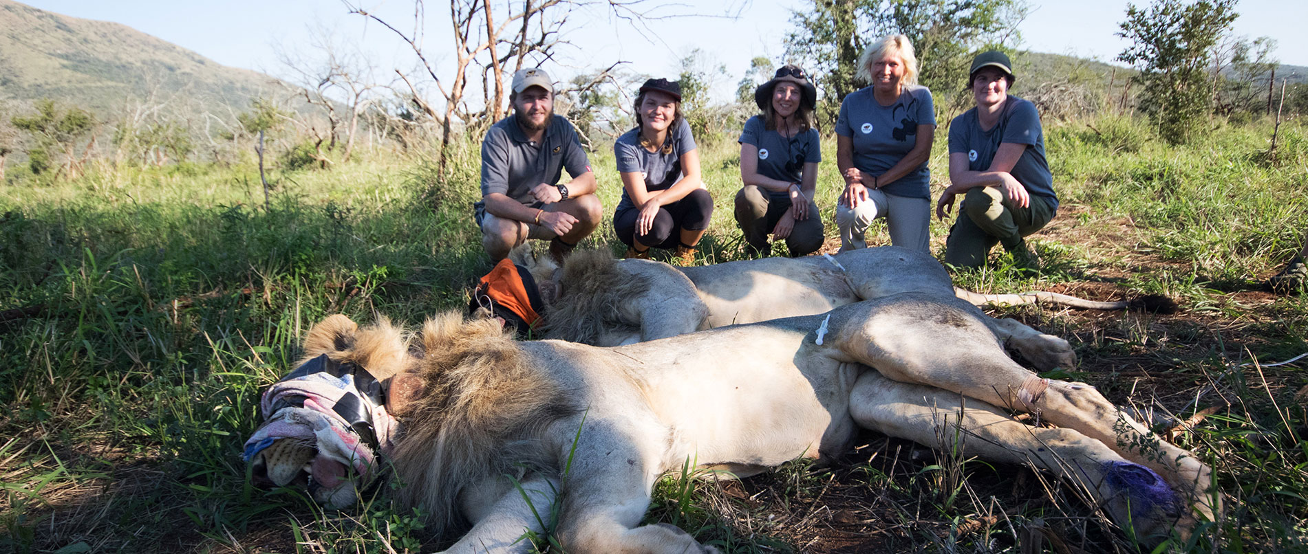 South Africa Endangered Species Conservation