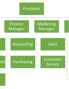 Matrix org structure also organizational rh globalnpsolutions