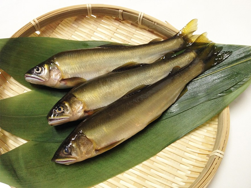 Ayu - Sweet fish Image