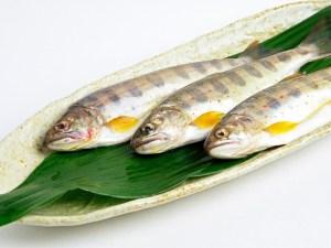 Iwana - Japanese Char Image