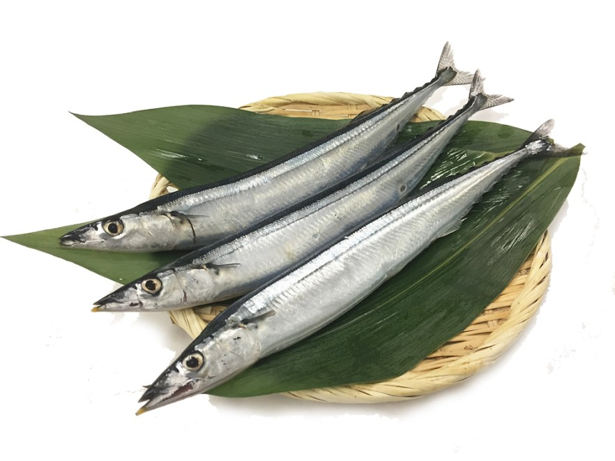 Sanma - Pike packerel Image