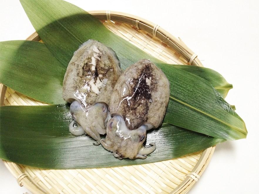 Shin Ika - Baby Squid Image