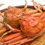 Seikogani / Zuwaigani - Snow Crab