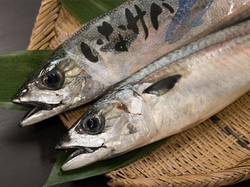 INA Saba - INA brand mackerel