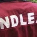 NDLEA nabs 10 men, 4 women for drug peddling in Bayelsa