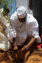 Governor Aminu Waziri Tambuwal planting a tree to flag-off the 2015 tree planting campaign in Kawadata, Goronyo Local Government Area of Sokoto State.