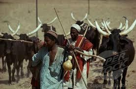 Fulani nomadic herdsmen
