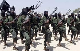 Terrorist fighters