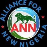 Get serious about Enugu Airport repairs, ANN tells FG