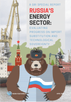 russia import substitution reform energy