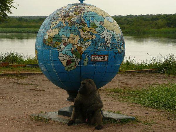 Murchison Falls National Park, Uganda. Photo by Michel Sautel - VonTasha.