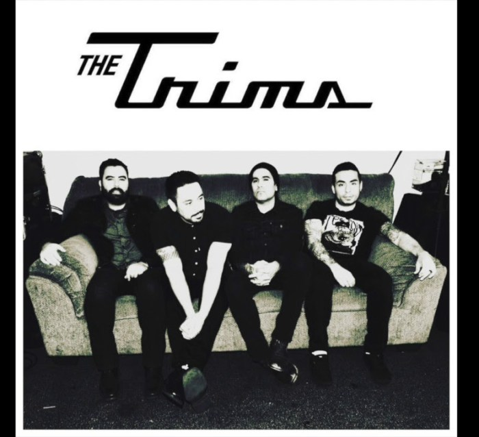 the trims