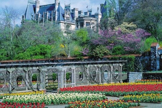 Biltmore Estate and Garden