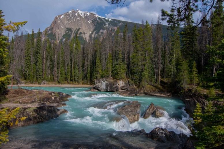 Natural Bridge Falls near Emerald Lake.
