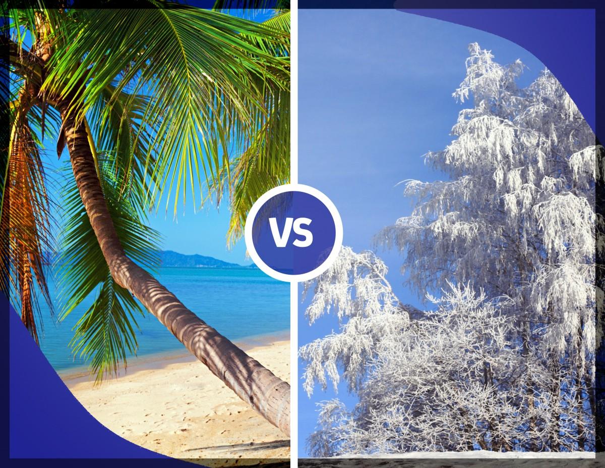 Summer Vs Winter The Debate